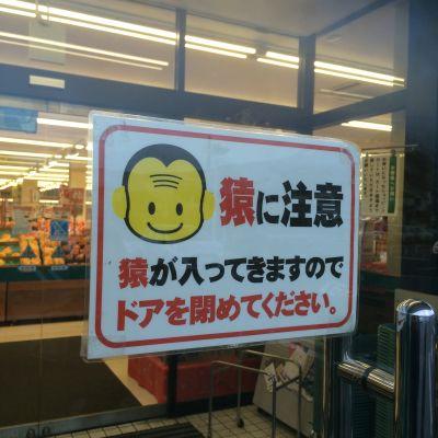 日光のスーパーにて