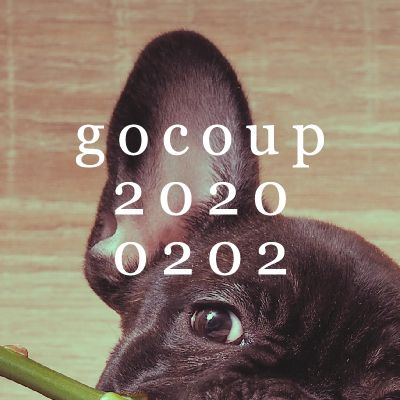gocoup