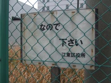 江東区にて