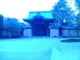 高台寺にて
