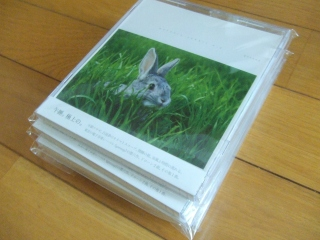 mercury rabbit e.p.