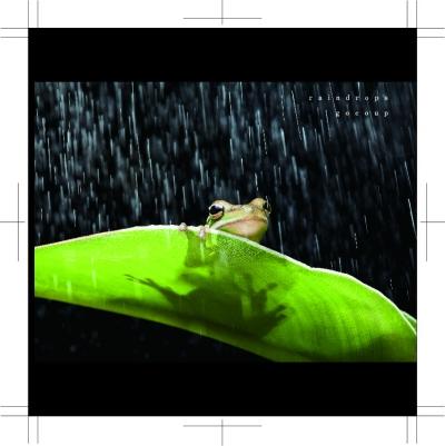 raindrops_表