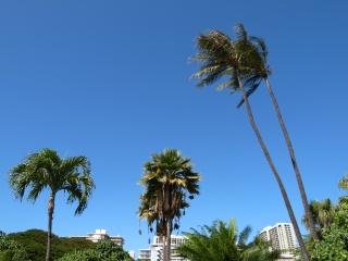 ハワイっぽい写真